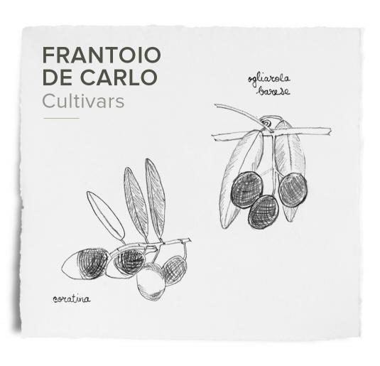 Frantoi - De Carlo
