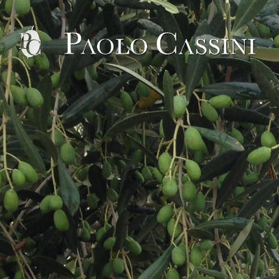 Frantoi - Paolo Cassini