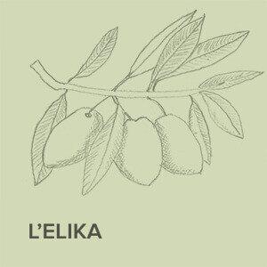 Frantoi L'Elika small