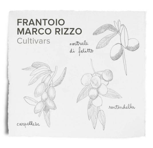 Marco Rizzo, cultivars